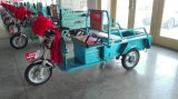 Adults를 위한 500W 중국 Cargo Electric Tricycle