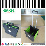 Paquet et Roll Plastic Folding Shopping Cart