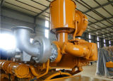 세륨을%s 가진 400kw Biogas 전기 발전기 & ISO는 증명서를 준다