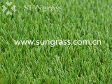 tappeto erboso sintetico di ricreazione/paesaggio di 35mm (SUNQ-AL00059-1)