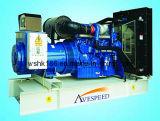 groupe électrogène 165kVA diesel/jeu de se produire