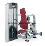 Máquina comercial de Tricep do equipamento da ginástica da aptidão para a venda