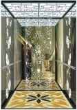 Gearless牽引Vvvfは起点に運転するドイツの技術(RLS-249)の別荘のエレベーターを