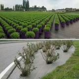 庭の地被植物PP雑草防除のマット