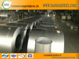 Steel Galvanized Steel Coil