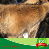 Chino al por mayor collar de la piel del mapache