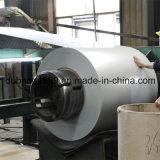 PPGI con diseño de la manera de la fábrica directa