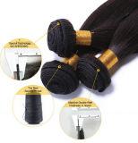 Prolongation de cheveux humains de mode (XS-MHW-CH-STW)