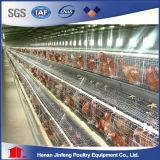 Gaiola automática da galinha da camada do projeto da bateria do equipamento da exploração avícola