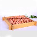Núcleo de cacahuete redondo de color rosa
