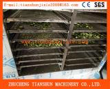 Procesamiento de secado de frutas y hortalizas