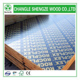 Erstklassiges Quality 18mm Film Faced Plywood mit Logo