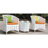 小さい円卓会議が付いている庭の屋外の椅子そして表