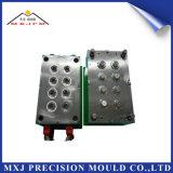 Molde plástico modificado para requisitos particulares del molde de la precisión de las piezas electrónicas automotoras del gusano