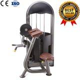 Equipo profesional del enrollamiento del bíceps de la máquina del ejercicio