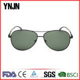 Les Mens professionnels d'usine rétro conçoivent les lunettes de soleil en fonction du client (YJ-F8455)
