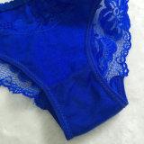 El cordón grande atractivo de la ropa interior de las mujeres del OEM modifica las bragas para requisitos particulares