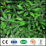 新式の紫外線保護された美化の常緑の人工的なプラント