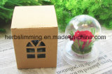 Zidantou высушило цветок искусствоа цветков 3D сохраненный DIY с Heart-Shaped украшением дома стеклянной бутылки коробки
