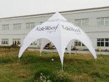 Ausstellung-Armkreuz-Bogen-Zelt für im Freien