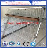 Cage de poulet de couche d'oeufs/cage de poulet