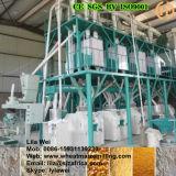 100t/24h Degerminating Mais-Fräsmaschine für Kenia