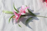 I fiori artificiali multicolori del giglio per la decorazione domestica