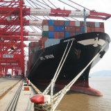 Serviço de transporte excelente a Manzanillo como a expedição de LCL