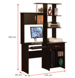 Modern School Library Lab Office Furniture Wooden Computer Desk (HX-DR085)