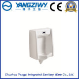 正常な壁に取り付けられた誘導の陶磁器の尿瓶