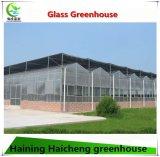Дом высокого качества зеленая целесообразная для самомоднейшего земледелия