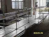 Impalcatura galvanizzata tuffata calda della costruzione di Ringlock