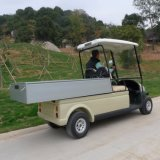 De Kar van het Voertuig van het elektrische Nut met Lading voor Verkoop