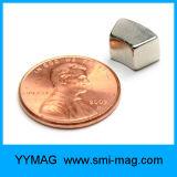 Qualitäts-seltene Massen-Lichtbogen-Paralleltrapez-Magnet-Neodym für Verkauf
