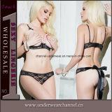 De Reeks van het Ondergoed van de Bustehouder van dame Women Sexy Lingerie Sleepwear Kousen (TFQQ1092)