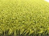 hierba artificial de múltiples funciones /Turf de 10m m