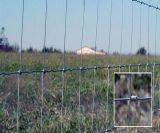 Clôture de grenaille galvanisée à chaud et mousqueton