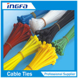 Serre-câble en nylon avec la marqueterie d'acier inoxydable pour l'exécution facile