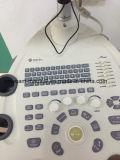 디지털 수의사 초음파 스캐너