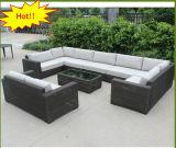 Sofà di vimini resistente CF1418 della mobilia esterna del giardino dell'acqua