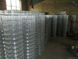 1 дюйм ячеистая сеть 2X2 гальванизированная & PVC покрынная сваренная
