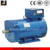 중국 20kw 25kVA 솔 Stc 발전기 가격