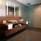 壁掛けの装飾的なミラーをつける斜めの端の浴室LED
