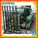 Unità di condensazione del compressore a vite parallelo con gas caldo che disgela