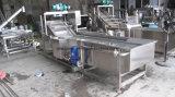 Máquina de lavar vegetal do arruela da fruta e verdura do ozônio/a Home