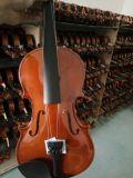 Preiswerte Bescheinigungs-Kursteilnehmer-Großhandelsvioline der Musikinstrument-BV/SGS