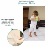 De V.S. Hete Verkopende Terry Waterproof Mattress Protector
