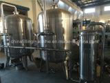 Système normal de RO d'installation de traitement d'eau potable de la CE