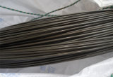A bobina do fio de aço para M22 aparafusa 10b33 Saip