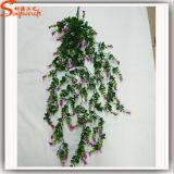 EDERA artificiale dell'erba della decorazione calda di vendita